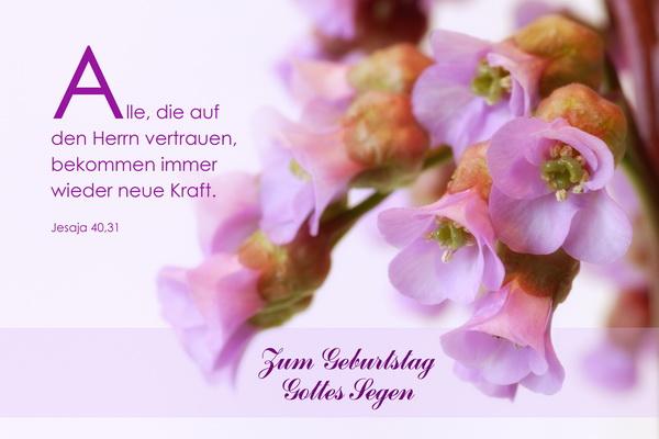 Bibelspruch Fur Geburtstag Leticiafleabella Web